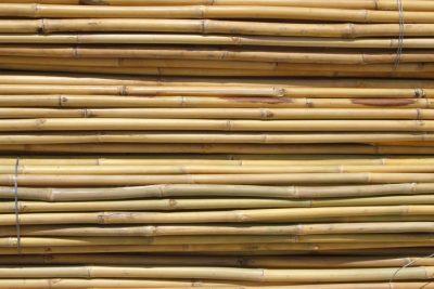 02 Canya de Bambu