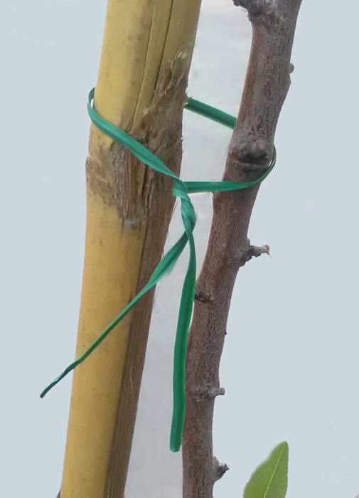 alambre-plastificado-1