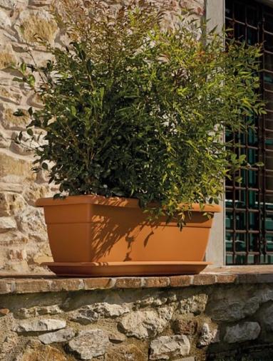 jardinera ducal
