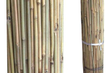 Bamboo Chinese